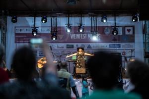 Weinfest-Website