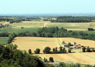 Landwirtschaftsbetrieb in Arad