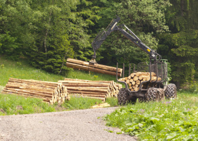 Aufbau Forstbetrieb in Rumänien